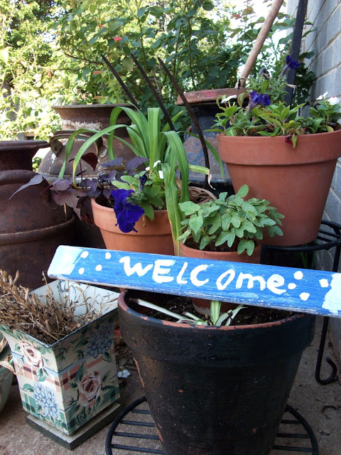 rp_june-garden-welcome.jpg