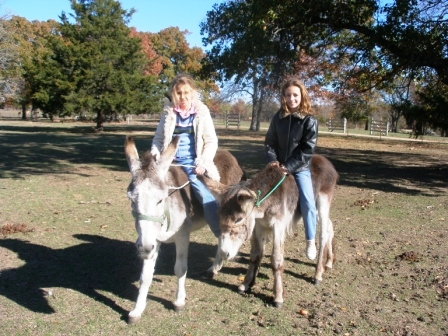 rp_girls-on-donkeys-2006.jpg