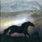 The Horse Whisperer: a Book Review