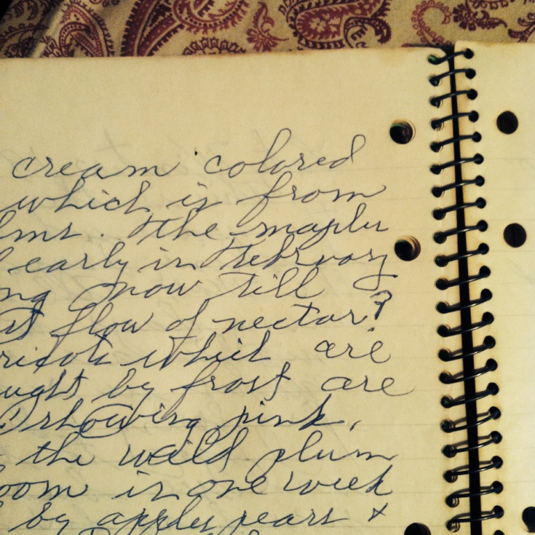 Apiary Journal, Early March 1972