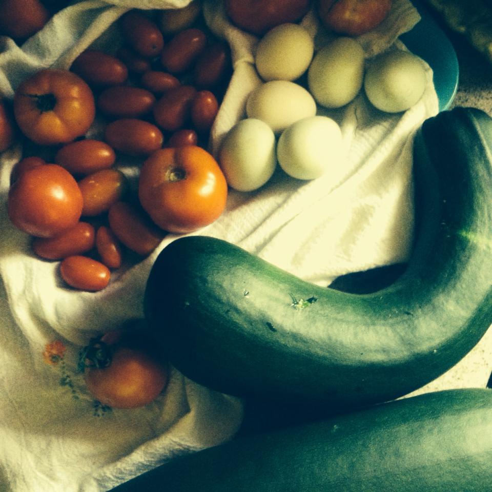 july 2014 harvest