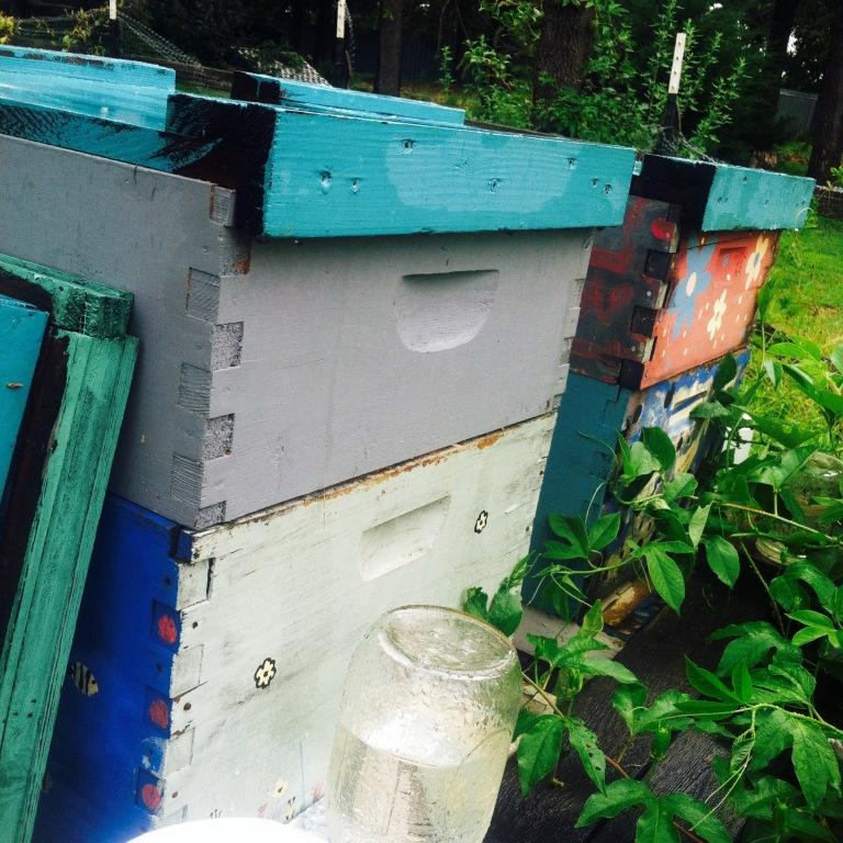 farm rain hives