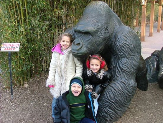 joc gorilla kids