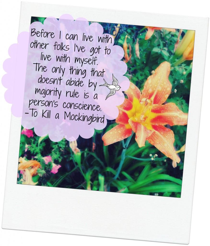 mockingjay reflection essay