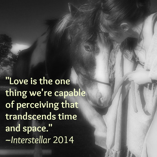 insterstellar quote with joc dusty photo