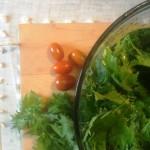 my salad mission, some salad advice, & 2 amazing salads already this week