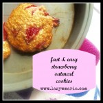 fast & easy strawberry oatmeal cookies