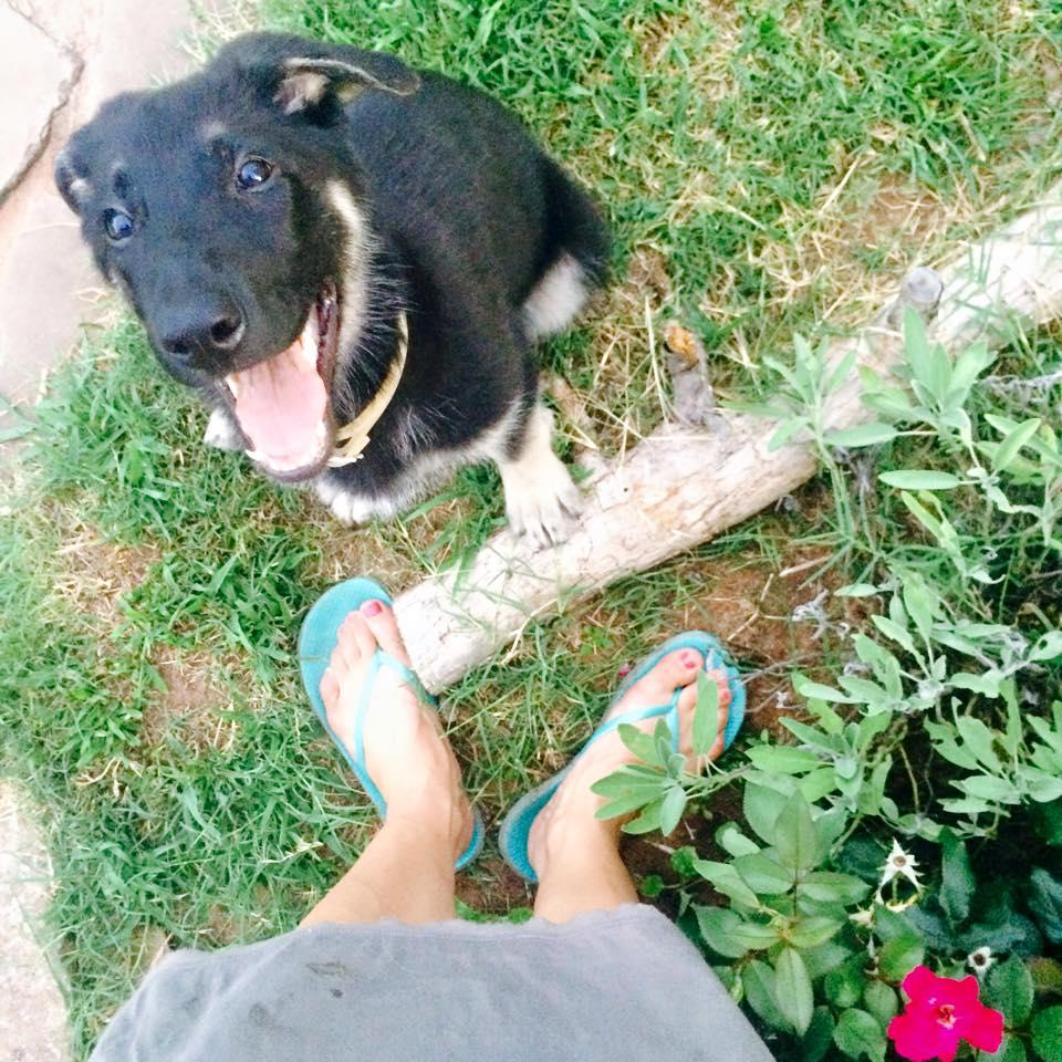 Klaus smile garden