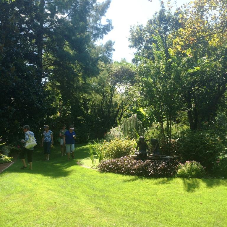 KF sunny lawn