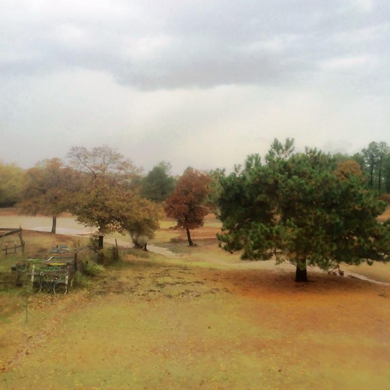 fri5 rain c