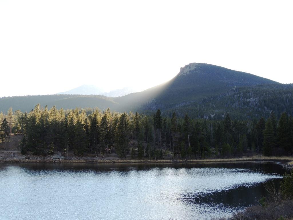 lily-lake