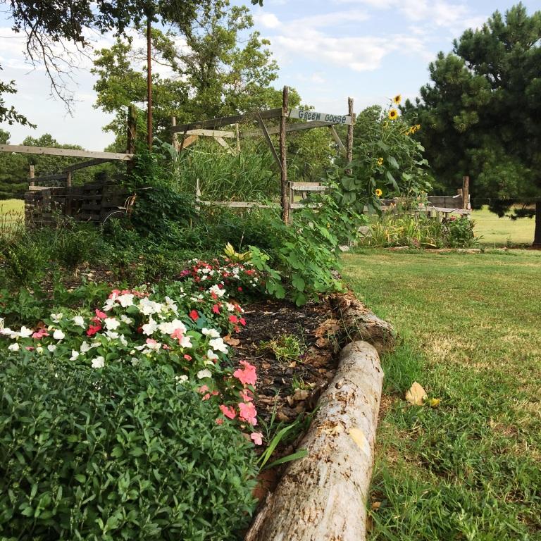Stop Damp In Garden Room