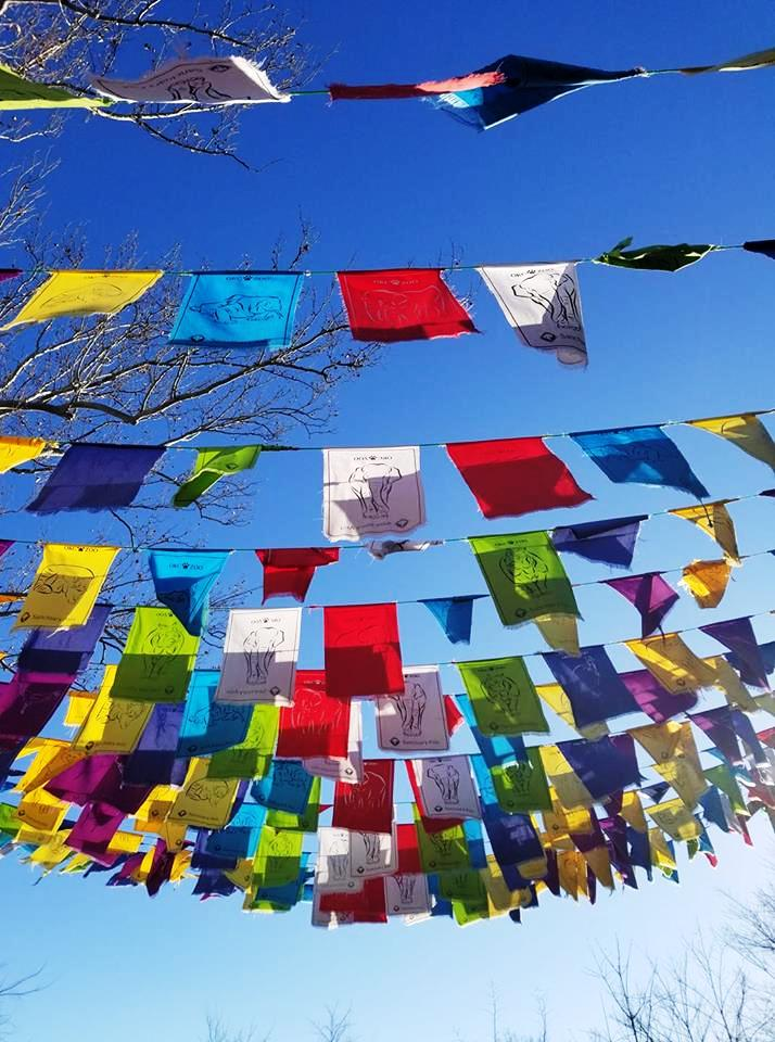 an alleyway of prayer flags at our OKC zoo